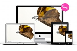 無料WordPressテーマwidespread